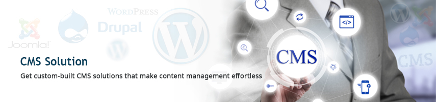 WordPress CMS Solution